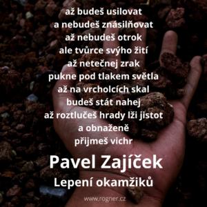 Pavel Zajíček - Tvůj kraj stejně jako můj kraj jde do prdele + Lepení okamžiků